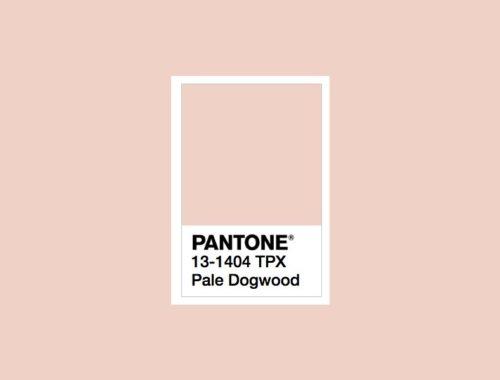 Pantone Pale Dogwood