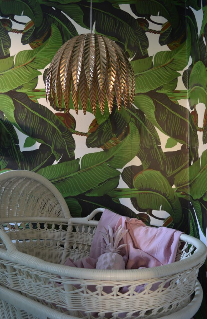 Banana leaves nursery