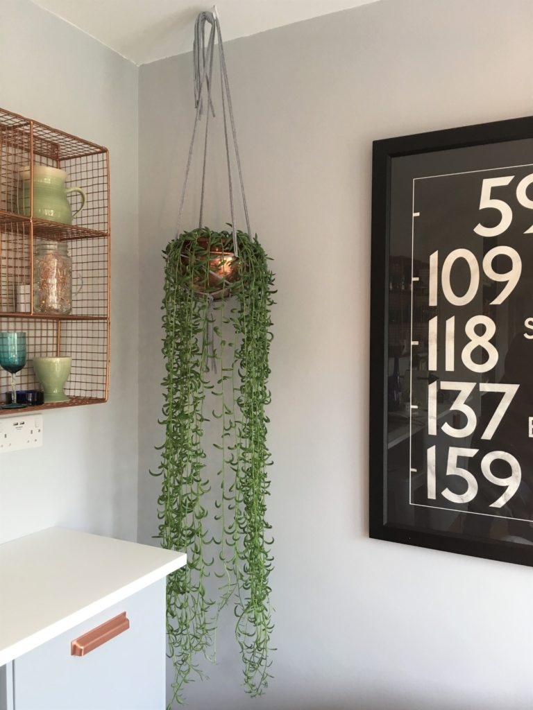 Plant hanger how to