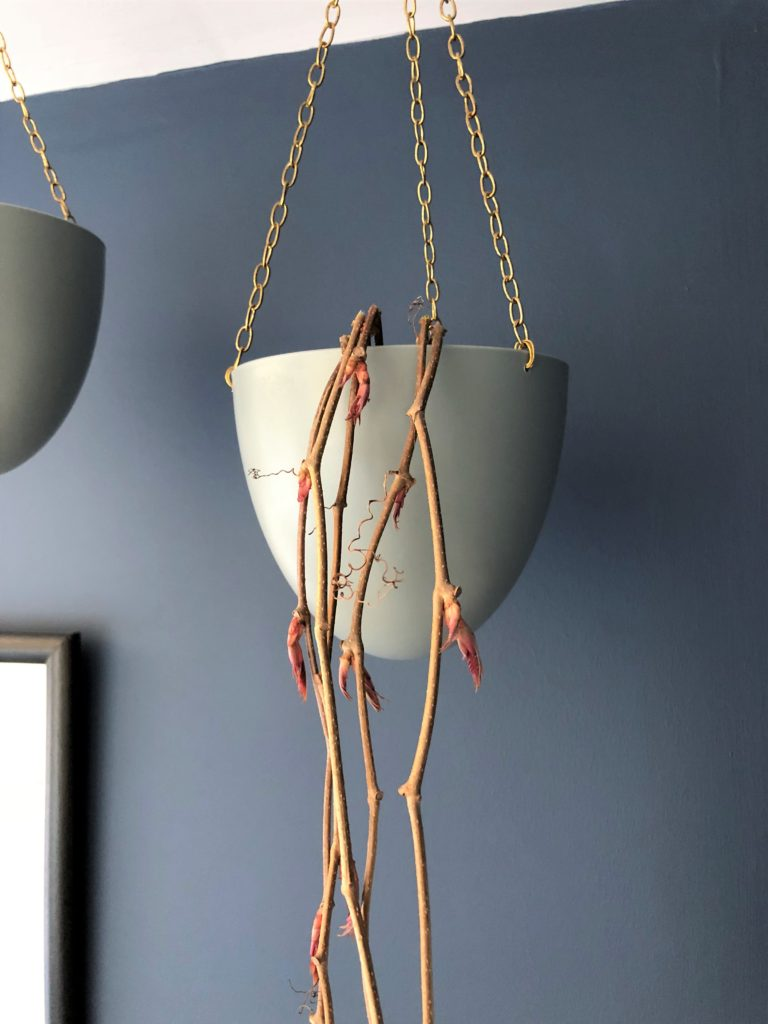 hanging plant pot hack