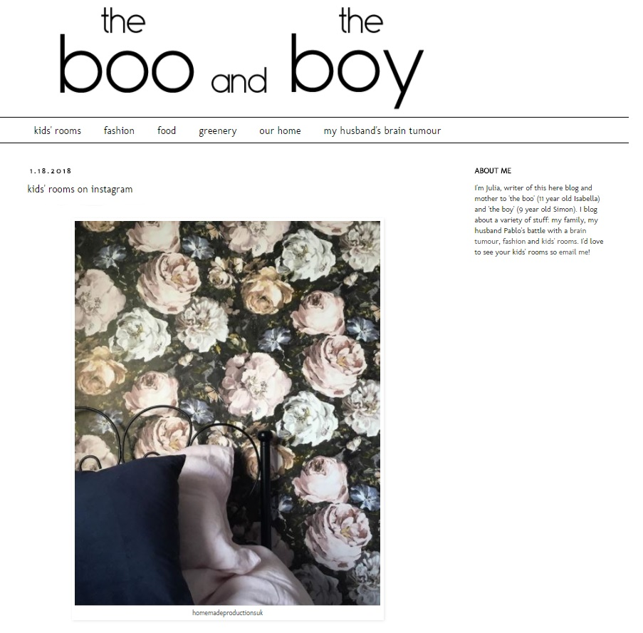 the boo and the boy January 2018