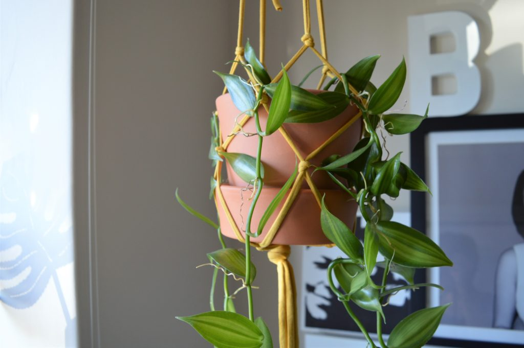 Plant hanger easy how to Home Made Productions